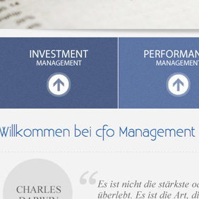 cfo Management